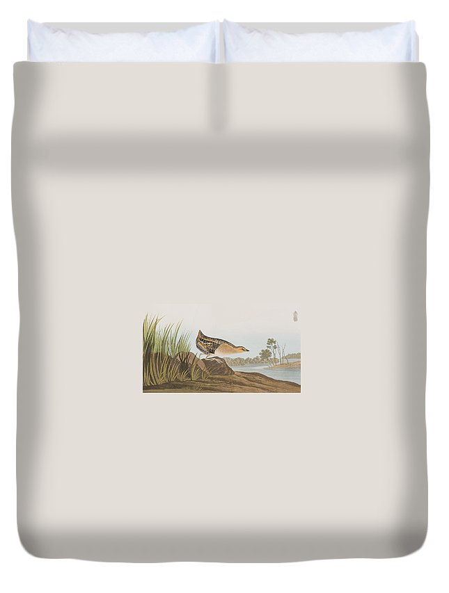 Rail Duvet Cover featuring the painting Yellow-breasted Rail by John James Audubon