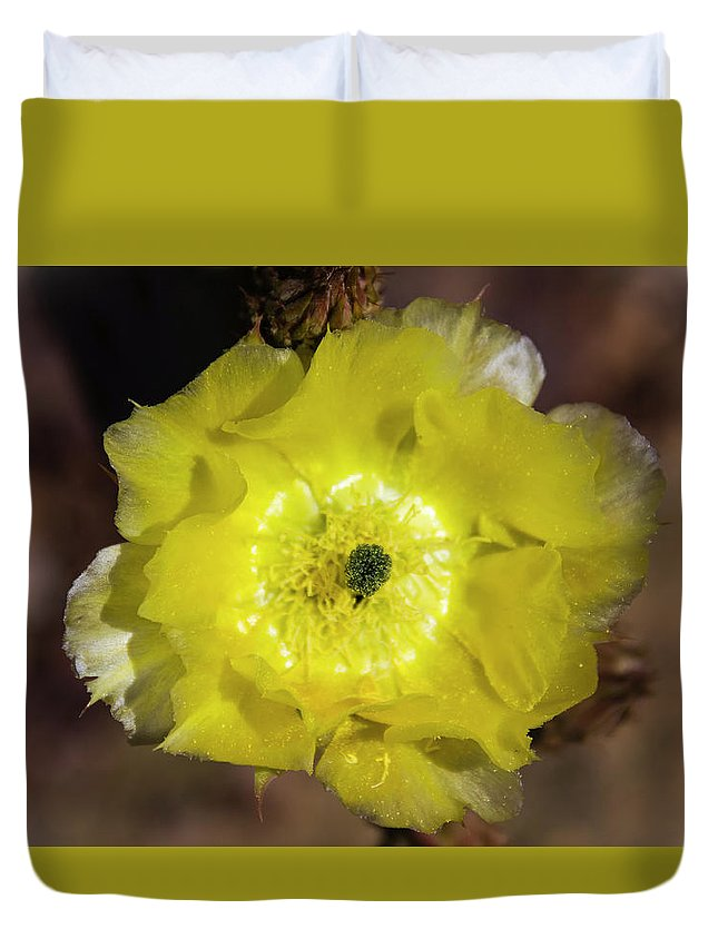 Flower Duvet Cover featuring the photograph Yellow Cactus Flower by Amy Sorvillo