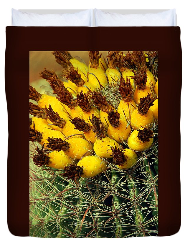 Cactus Duvet Cover featuring the photograph Yellow Cactus by Susanne Van Hulst