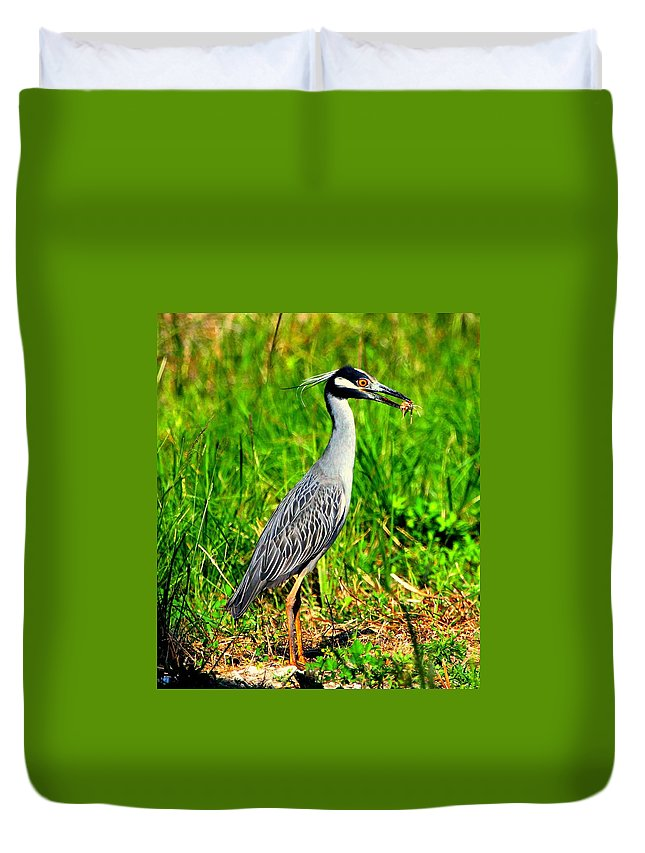 Yellow-crested Night Heron Duvet Cover featuring the photograph Yellow Crested Night Heron Catches A Fiddler Crab by Barbara Bowen