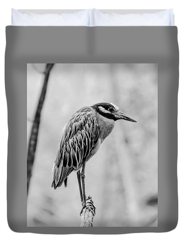 Heron Duvet Cover featuring the photograph Yellow-crowned Night Heron Black And White by Paula Ponath