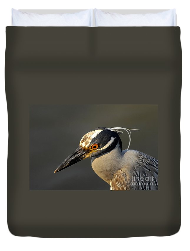 Yellow Crowned Night Heron Duvet Cover featuring the photograph Yellow Crowned Night Heron by David Lee Thompson