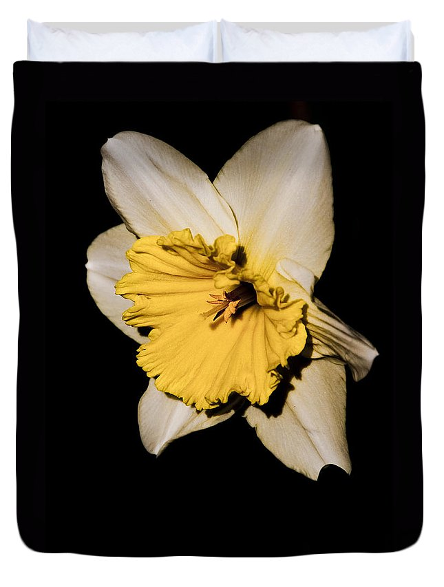 Daffodil Duvet Cover featuring the photograph Yellow Daffodil by Steven Natanson