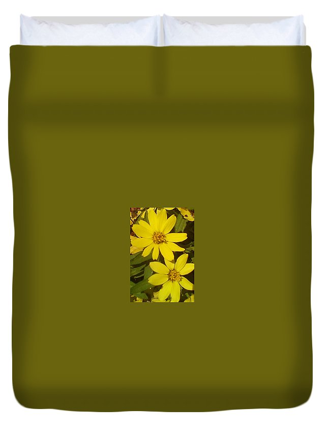 Daisy Duvet Cover featuring the photograph Yellow Daisies by Brenda Plyer