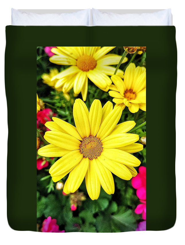 Yellow Duvet Cover featuring the photograph Yellow Daisies by Nadia Seme