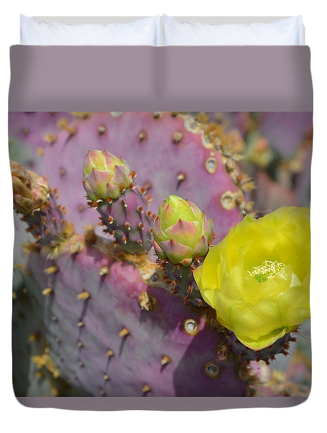 Cactus Duvet Cover featuring the photograph Yellow Desert Bloom by Aimee L Maher ALM GALLERY