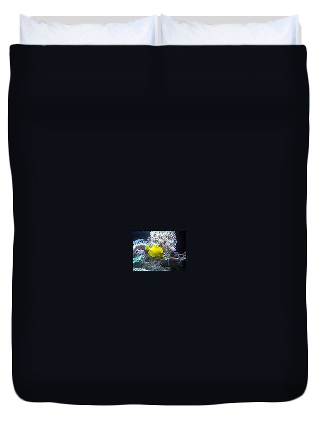 Duvet Cover featuring the photograph Yellow Fish by Miss McLean