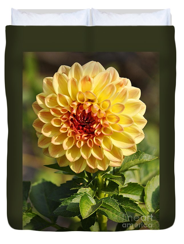Clay Duvet Cover featuring the photograph Yellow Flora by Clayton Bruster