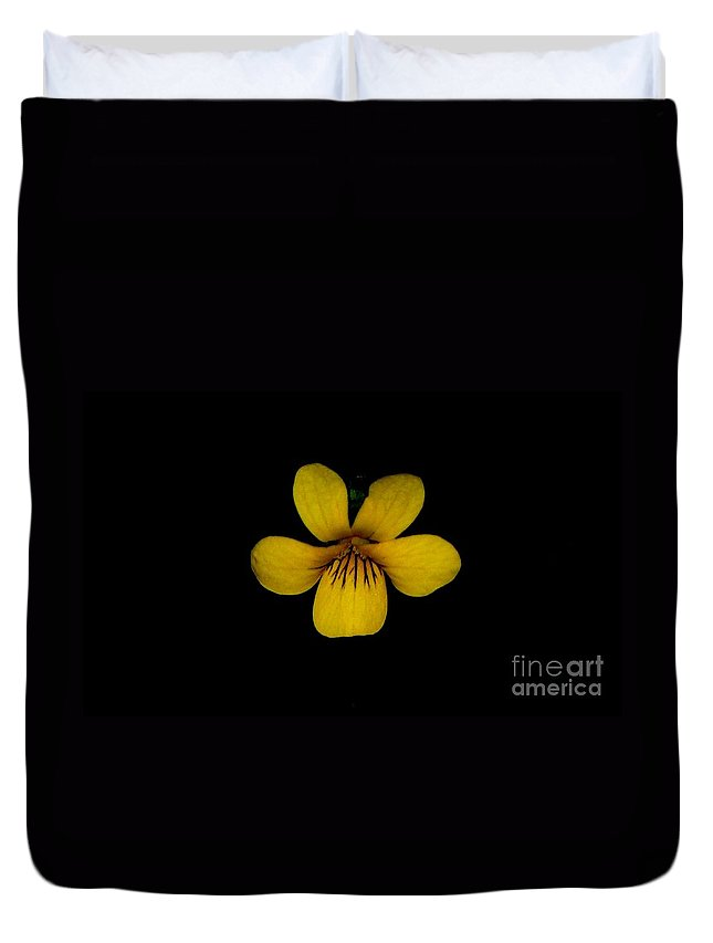 Landscape Duvet Cover featuring the photograph Yellow Flower 1 by David Lane