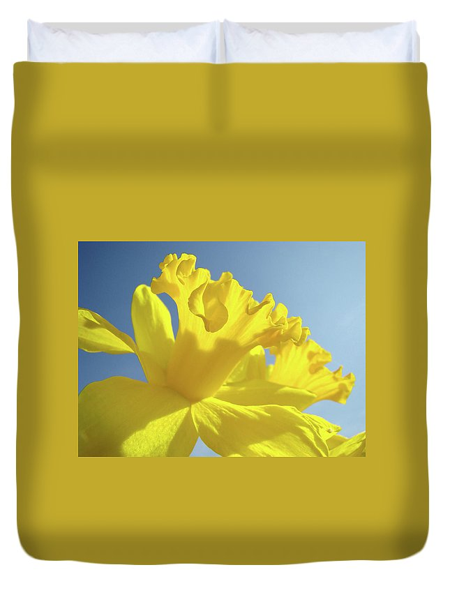 Flower Duvet Cover featuring the photograph Yellow Flower Floral Daffodils Art Prints Spring Blue Sky Baslee Troutman by Baslee Troutman