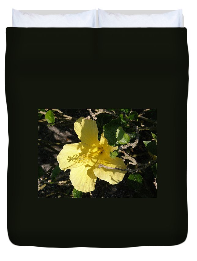 Yellow Duvet Cover featuring the photograph Yellow Flower In The Shade by Alice Markham