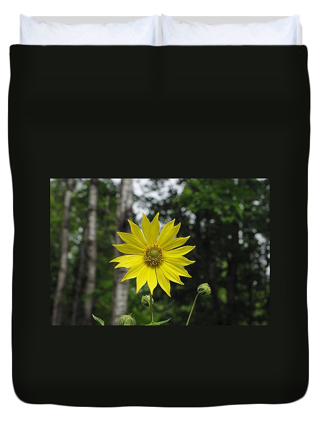 Yellow Duvet Cover featuring the photograph Yellow Flower In Woods by Alice Markham