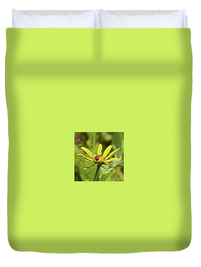 Yellow Flowers Duvet Cover featuring the photograph Yellow Flower by Kathy Kirkland