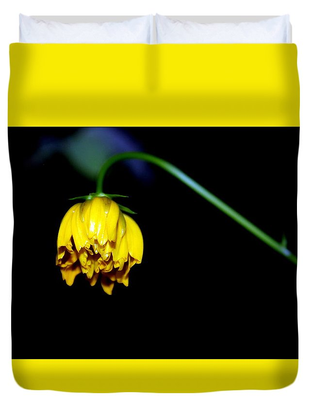 Yellow Duvet Cover featuring the photograph Yellow Flower by Silpa Saseendran