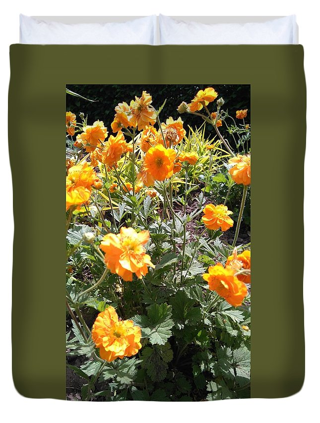 Yellow Flowers In A Botanical Garden In May Duvet Cover featuring the photograph Yellow Flowers In May by Connie Du