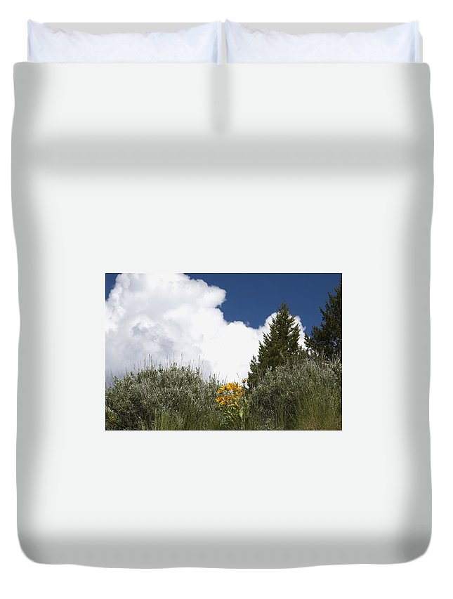 Clouds Duvet Cover featuring the photograph Yellow Flowers White Cloud by Sara Stevenson