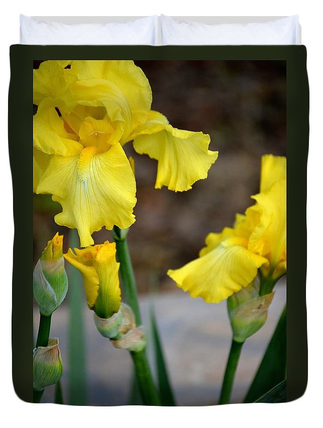 Flower Duvet Cover featuring the photograph Yellow Iris Bloom by Belinda Stucki