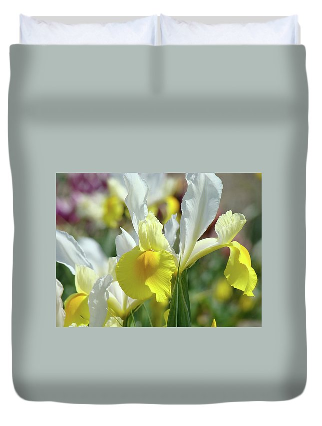 �irises Artwork� Duvet Cover featuring the photograph Yellow Irises Flowers Iris Flower Art Print Floral Botanical Art Baslee Troutman by Baslee Troutman