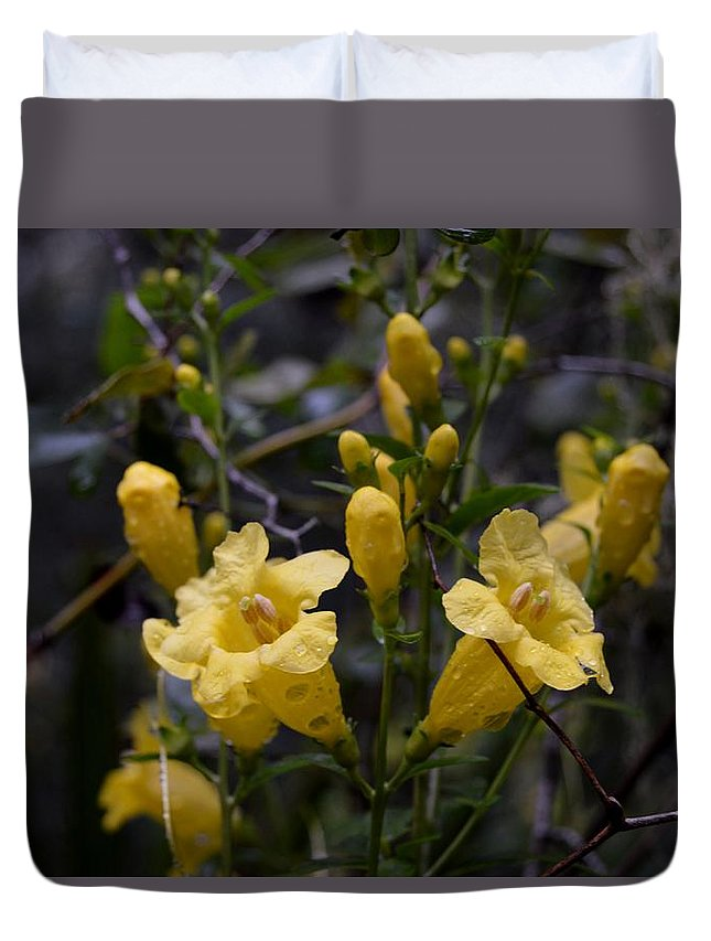 Yellow Jessamine With Raindrops Duvet Cover featuring the photograph Yellow Jessamine With Raindrops by Warren Thompson