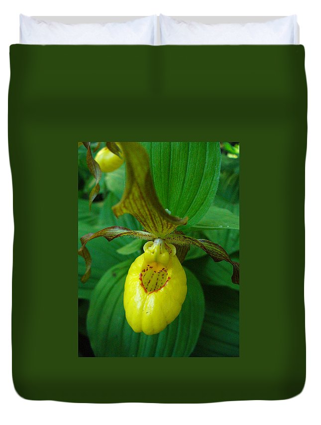 Yellow Lady Slipper Duvet Cover featuring the photograph Yellow Lady's Slipper by Peggy King