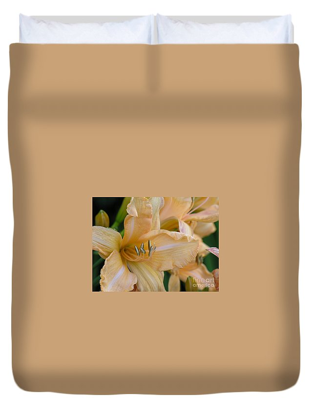 Yellow Duvet Cover featuring the photograph Yellow Lilly by Diane Greco-Lesser