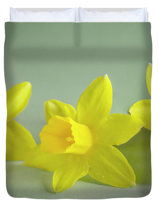 Yellow Mini Narcissus Duvet Cover featuring the photograph Yellow Mini Narcissus by Iris Richardson