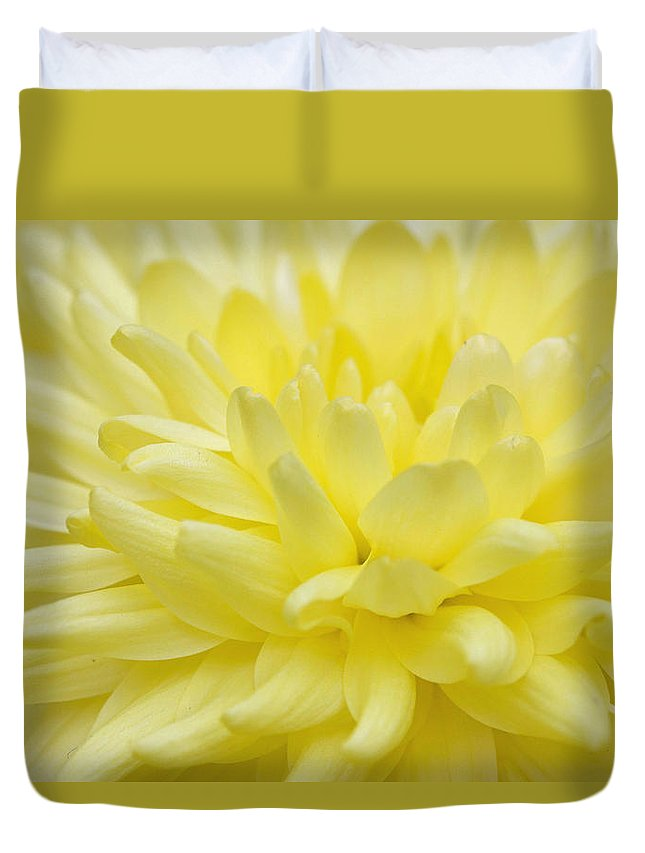 Yellow Duvet Cover featuring the photograph Yellow Mum by Jim Gillen