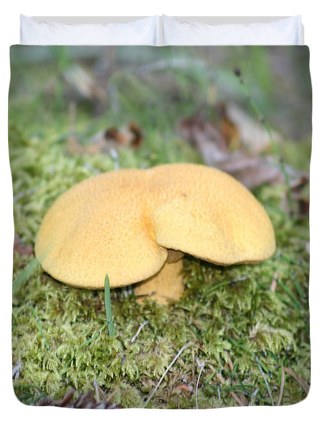 Mushrooms Nature Plants Wild Moss Acorns Forest Duvet Cover featuring the photograph Yellow Mushroom by Andrea Lawrence