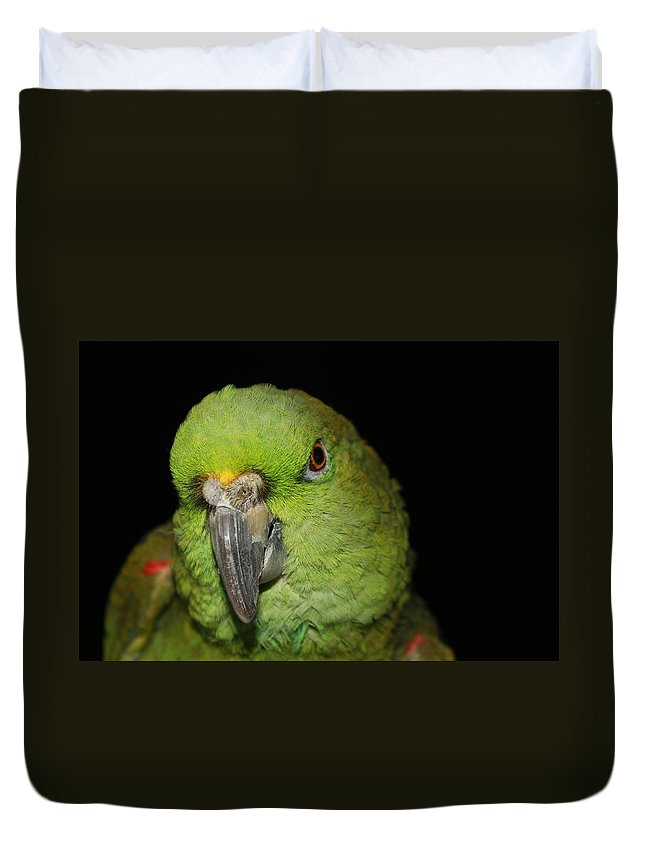 Yellow Duvet Cover featuring the photograph Yellow-naped Amazon Parrot by Alexander Butler