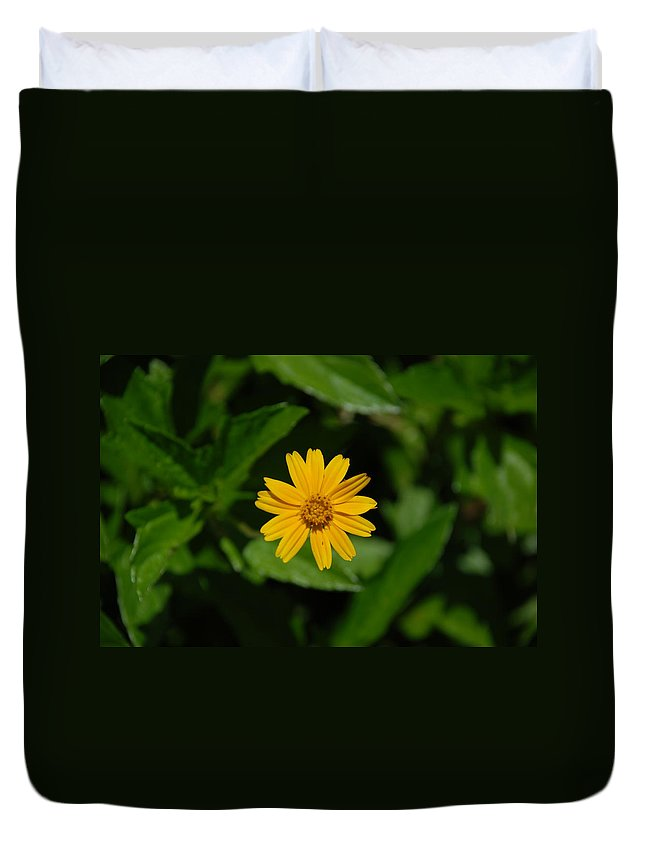 Macro Duvet Cover featuring the photograph Yellow by Rob Hans