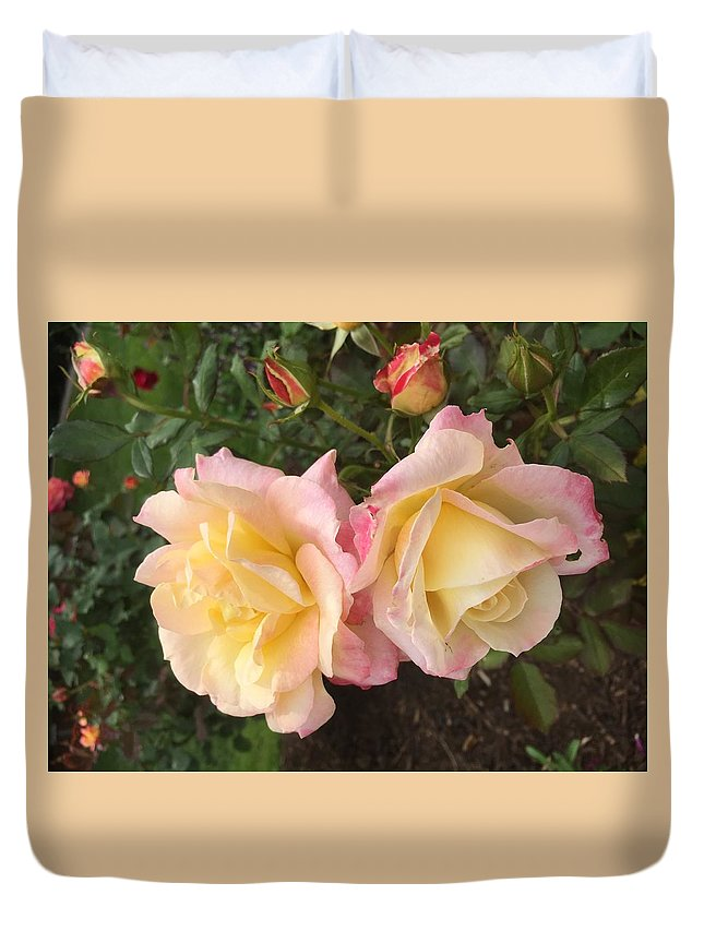 Flowers Yellow Duvet Cover featuring the photograph Yellow Rose by Joel Baugh