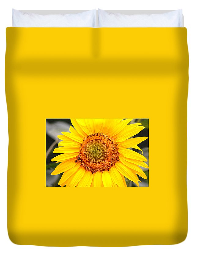 Sunflower Duvet Cover featuring the photograph Yellow Sunflower With Bee by Amy Fose