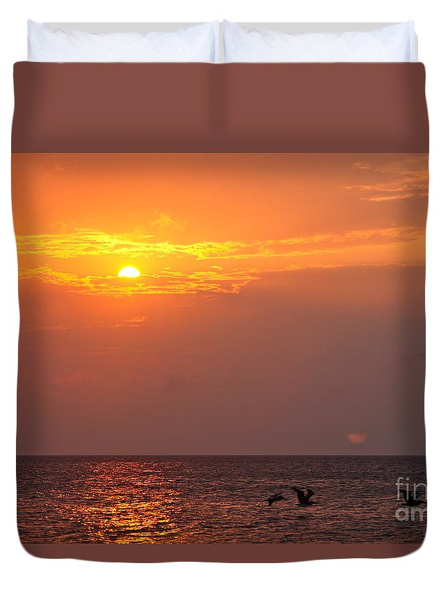 Birds Duvet Cover featuring the photograph Yellow Sunrise And Three Birds by Nadine Rippelmeyer