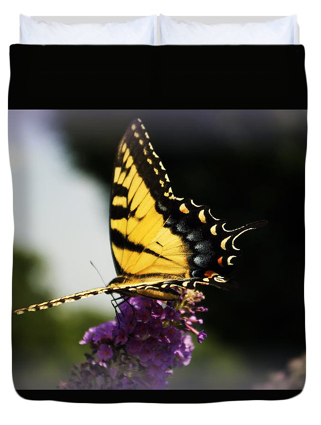 Butterfly Duvet Cover featuring the photograph Yellow touch by Scott Wyatt