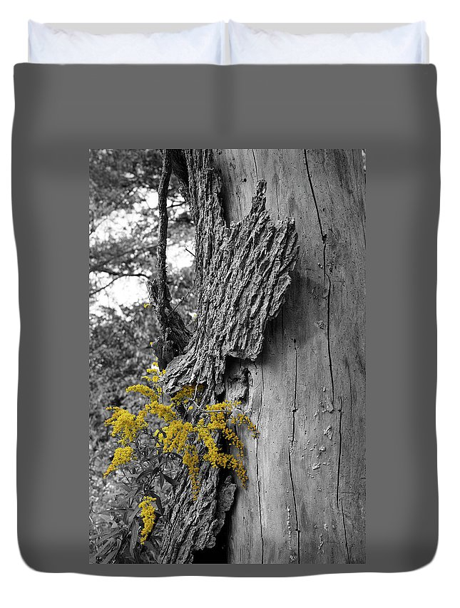 Bark Duvet Cover featuring the photograph Yellow Tufts by Dylan Punke