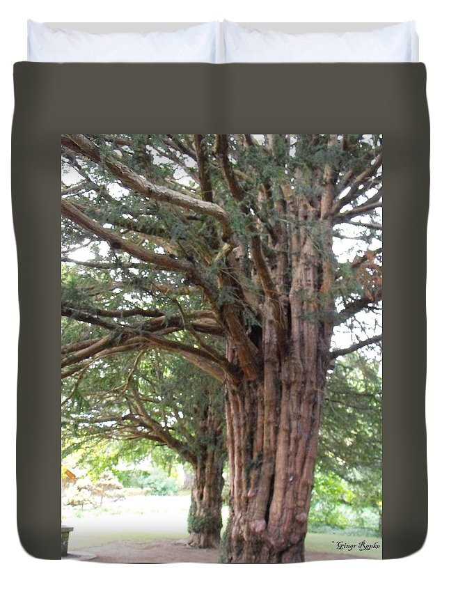 Yew Tree Entrance Duvet Cover featuring the photograph Yew Tree Entrance by Ginger Repke