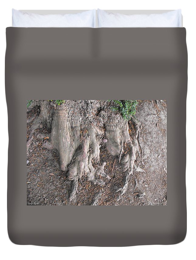 Yew Tree Roots Duvet Cover featuring the photograph Yew Tree Roots by Ginger Repke