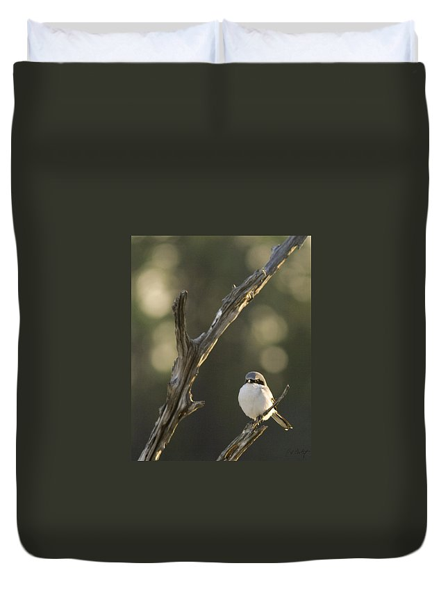 Bird Duvet Cover featuring the photograph You Lookin At Me by Phill Doherty
