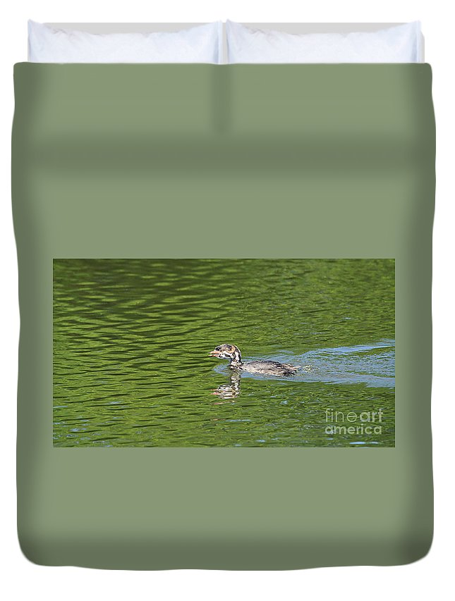 Animal Duvet Cover featuring the photograph Young Grebe by Marv Vandehey