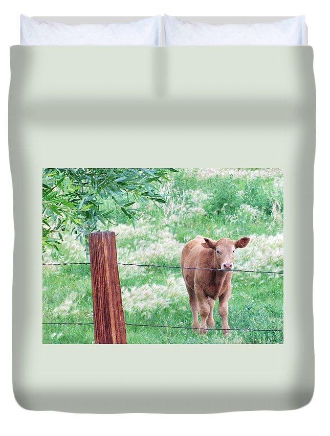 Grass Duvet Cover featuring the photograph Youngster by Marilyn Diaz