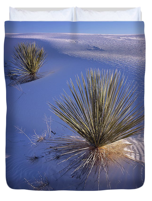 New Mexico Duvet Cover featuring the photograph Yucca In Gypsum Sand by Tom Daniel