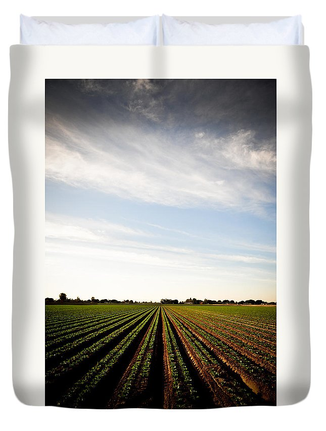 Lettuce Duvet Cover featuring the photograph Yuma Fields by Scott Sawyer