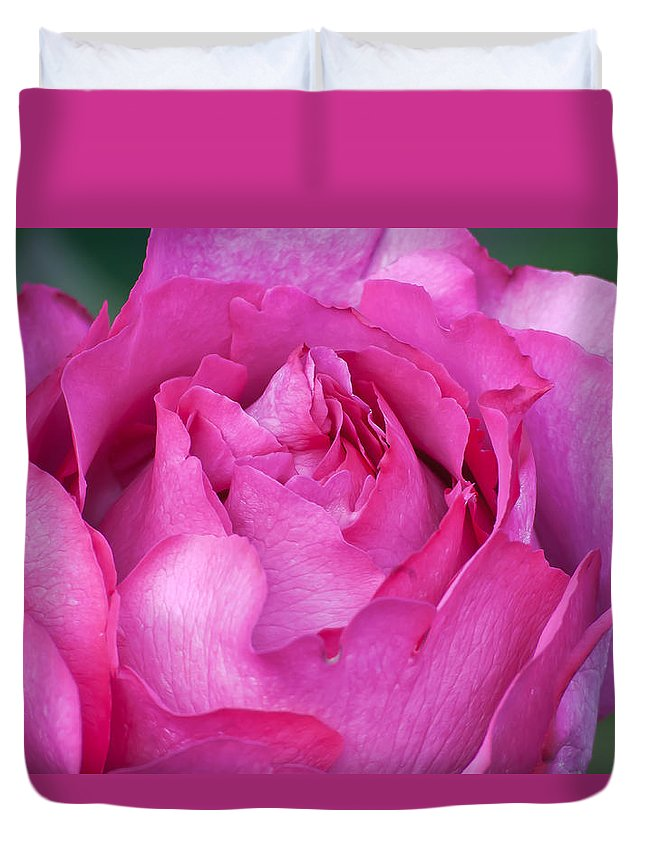 Appreciation Duvet Cover featuring the photograph Yves Piaget Rose by Emerald Studio Photography