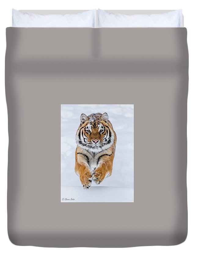 Tiger Duvet Cover featuring the photograph Zeal by Steven Szabo