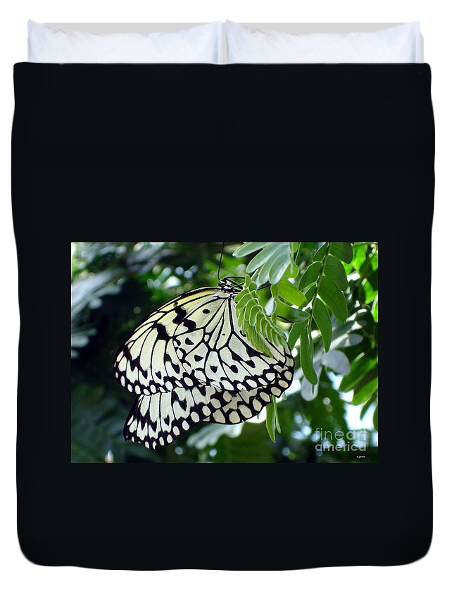 Butterfly Duvet Cover featuring the photograph Zebra In Disguise by Shelley Jones