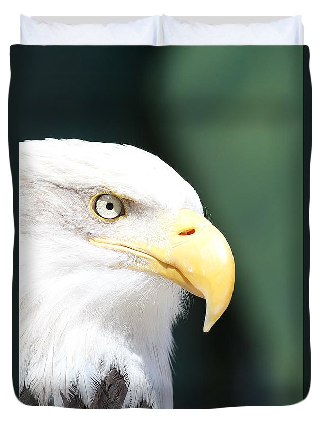 Eagle Duvet Cover featuring the photograph Zeroed In by Laddie Halupa