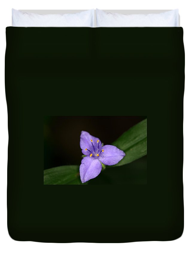 Zigzag Duvet Cover featuring the photograph Zigzag Spiderwort by Jack R Perry