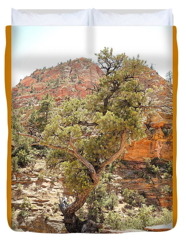 Zion Duvet Cover featuring the photograph Zion Hike 1 View 1 by Robert Meyers-Lussier