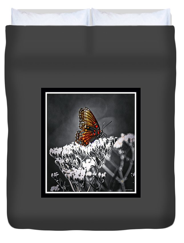 Butterfly Duvet Cover featuring the photograph 090319-72 by Mike Davis