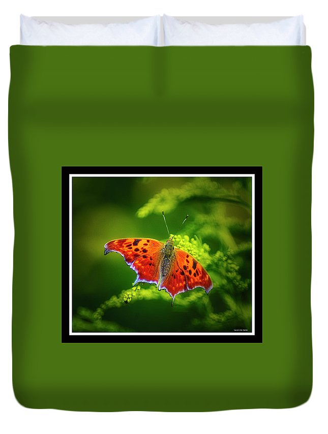 Butterfly Duvet Cover featuring the photograph 091319-81 by Mike Davis